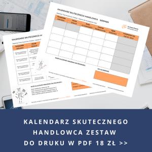 Kalendarz Skutecznego Handlowca do druku w PDF Iza Krejca-Pawski